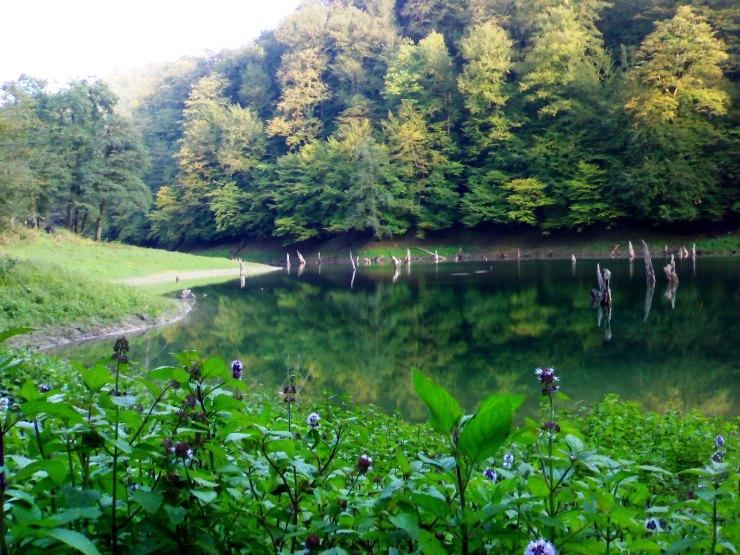 ساری دریاچه میانشه