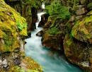 http://www.worldphotographyforum.com/gallery/data/2/thumbs/Avalanche_Creek_D700_0678_14x11.jpg